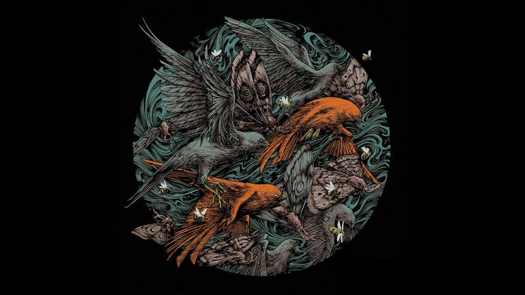 Scale The Summit Album Artwork